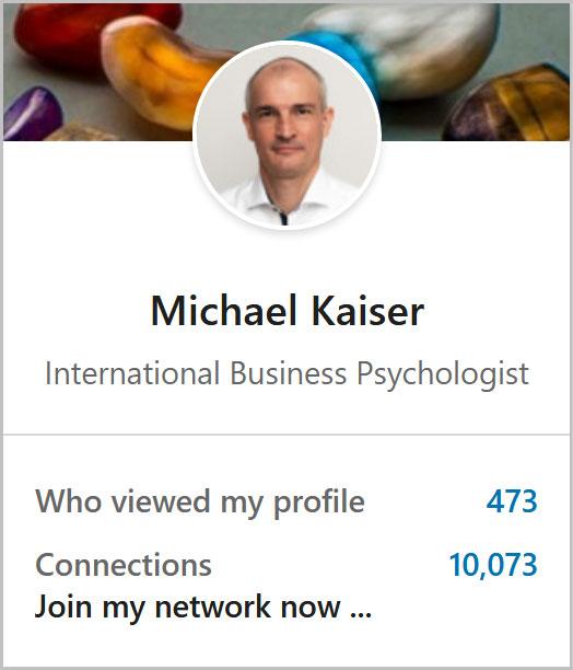 Link zum LinkedIn-Profil von Michael Kaiser